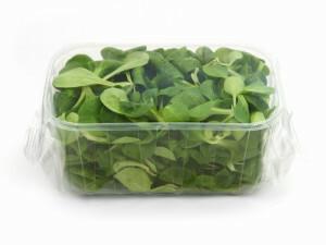 confezione flow pack in vaschetta per insalata
